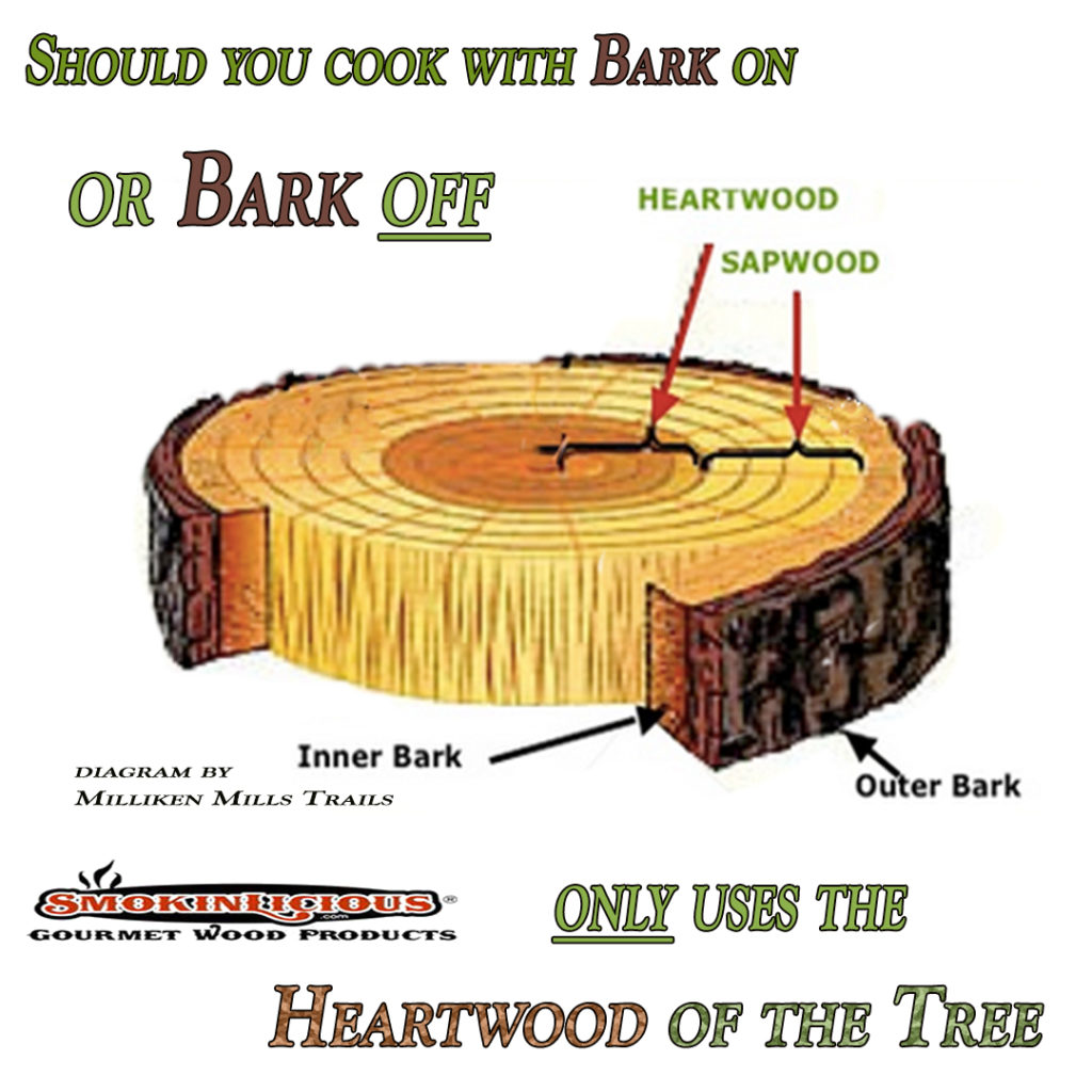 In the Bark or Not debate this Diagram shows the two key elements of the tree that can affect your Barbecue results. Smokinlicious® only harvest wood from the heartwood of the tree.
