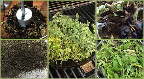 Our preparation of smoked herbs, from picking, smoking and grinding to make smoked herb dust. Adding great flavor to dishes.