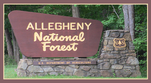 The sign is the entrance to the precious forest- allegheny national forest which includes 513,175 acres or 801.8 square acres and includes the allegheny reservoir natural habitat
