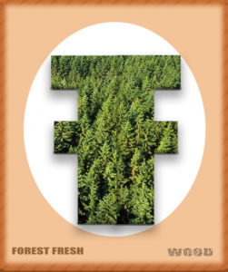 forest hardwoods for smoking in all Smokinlicious® products