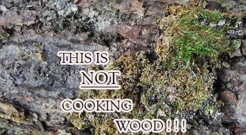 Learn why moldy hardwood is unfit for cooking and smoking food. Do not GRILL WITH MOLDY WOOD!